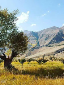 گرچال، دشت هویج لواسان: سیری در سرزمین ایزدی